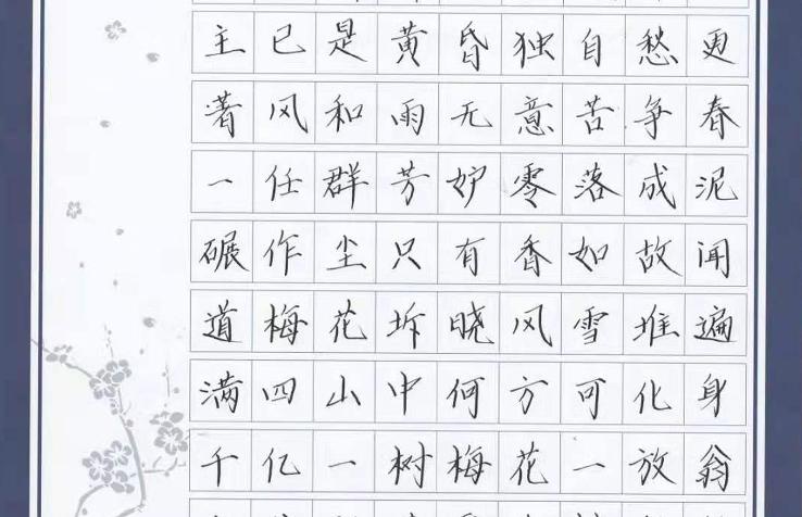 钢笔楷书作品展示【练字加盟】